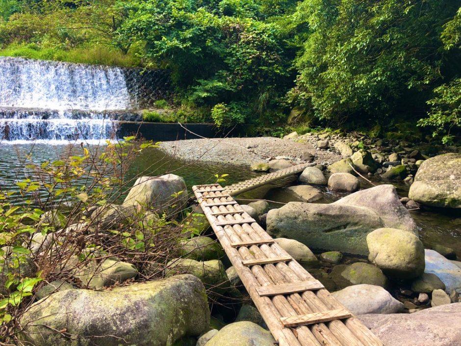 須雲川の渓流