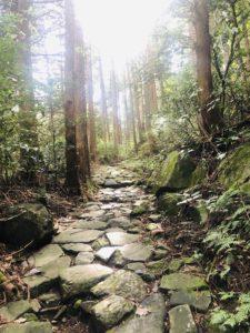 箱根旧街道(旧東海道)の石畳