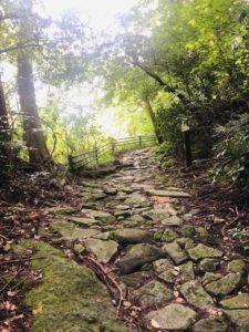 箱根旧街道(旧東海道)の石畳の道